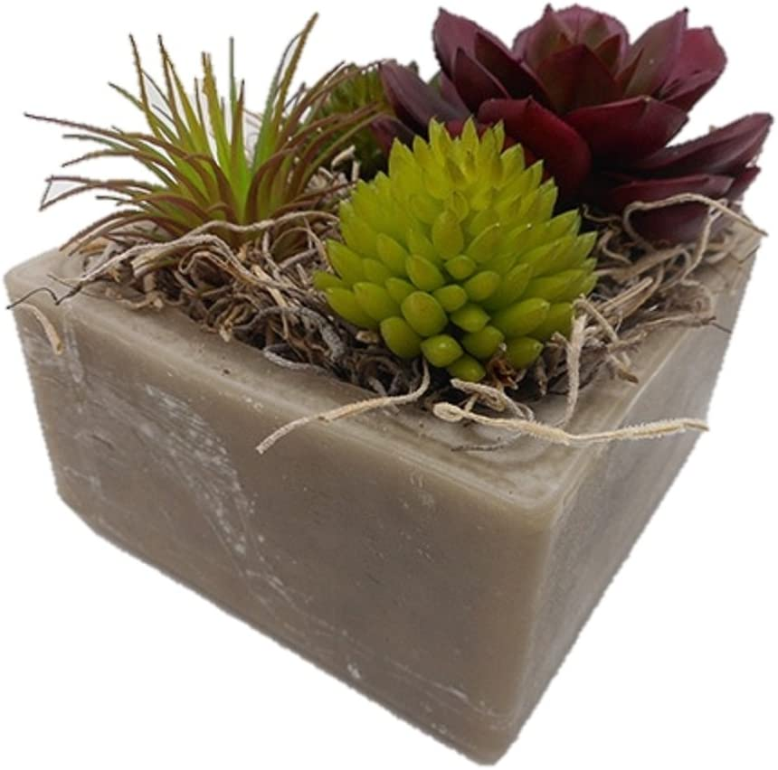 Habersham Candle Co. Sand Storm Succulent GEO Cube Candle