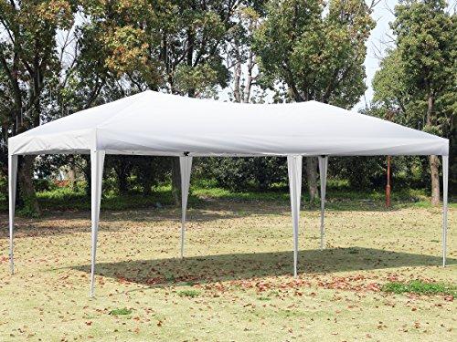 10x10 portable canopy - 5