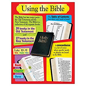 Trend Enterprises Using The Biblelearning Chart (T-38701)