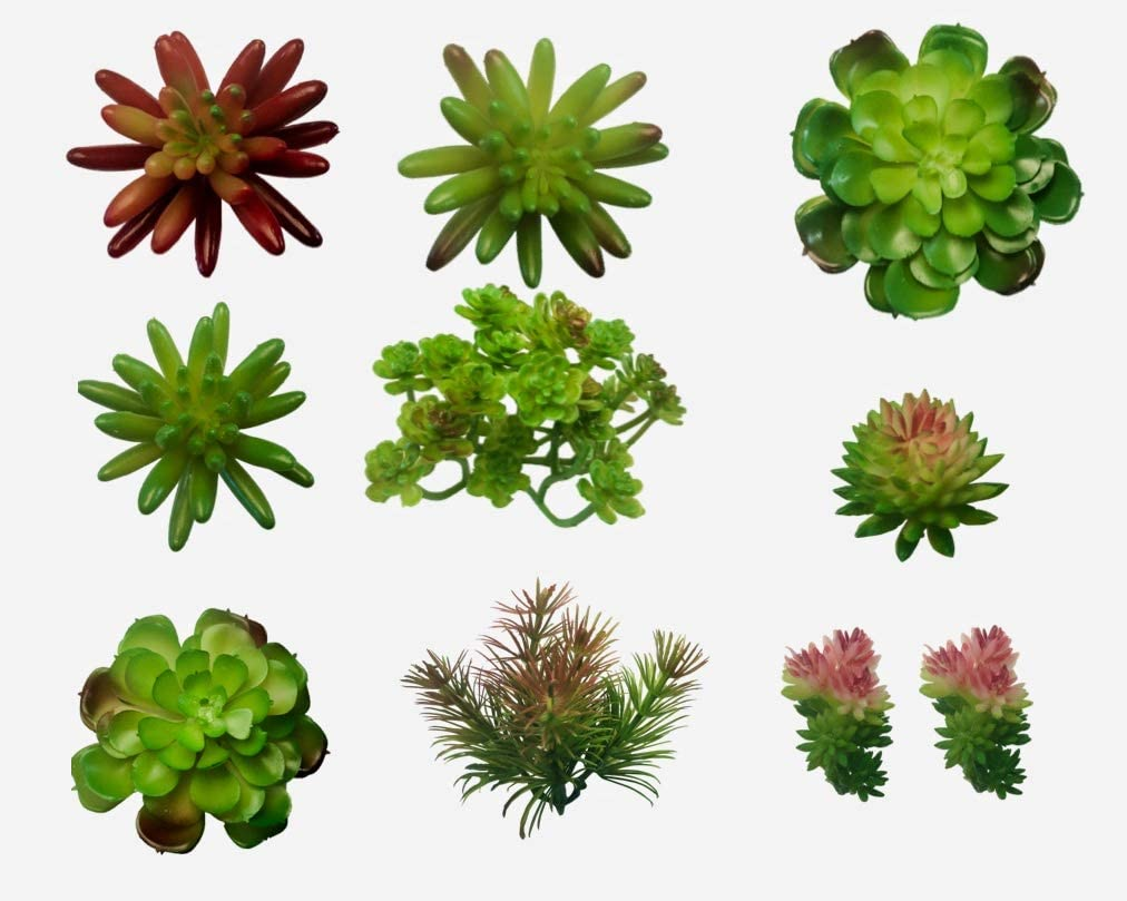10 Artificial Succulent Plants - Create Realistic Succulent Arrangements, Faux Unpotted Succulent Decor, and Fake Succulent Planter Outdoor and Indoor - Easy DIY with Stems