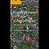 Back Home for Christmas (North Georgia Days Book 12)