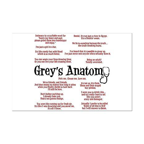 Amazon.com: CafePress - Grey\'s Anatomy Quotes - Mini Poster ...