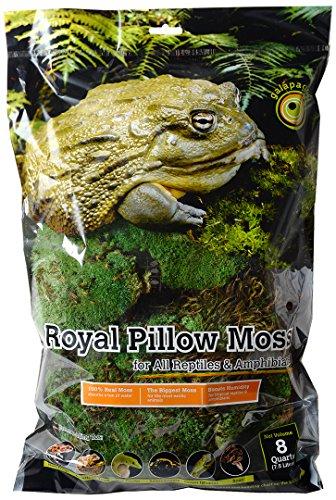 Galapagos (05254 Royal Clumps of Real Pillow, Natural, 8 Quart
