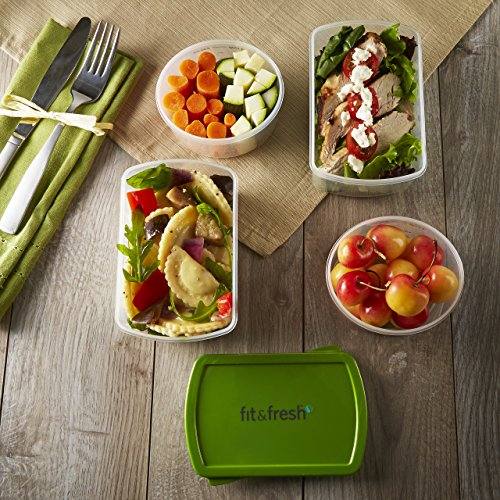 fit-fresh-smart-portion-1-cup-2-cup-reusable-lunch-containers-with-removable-ice-packs-set-of-4-port