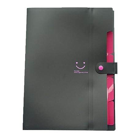 Toexy - Archivador expandible para A4, tamaño de carta, 5 bolsillos, organizador de documentos y archivos de papel con cierre a presión para la escuela y la ...