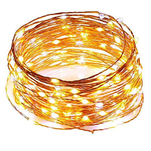 Sunnest LED String Lights, 2 Colors Interval Fairy Lights with UL Listed Power Adapter, 120 LEDs 39ft Copper Wire String Lights Waterproof for Indoor and Outdoor, Bedroom, Garden, Festival and Party (Painting Outdoor Collection Seasonal)