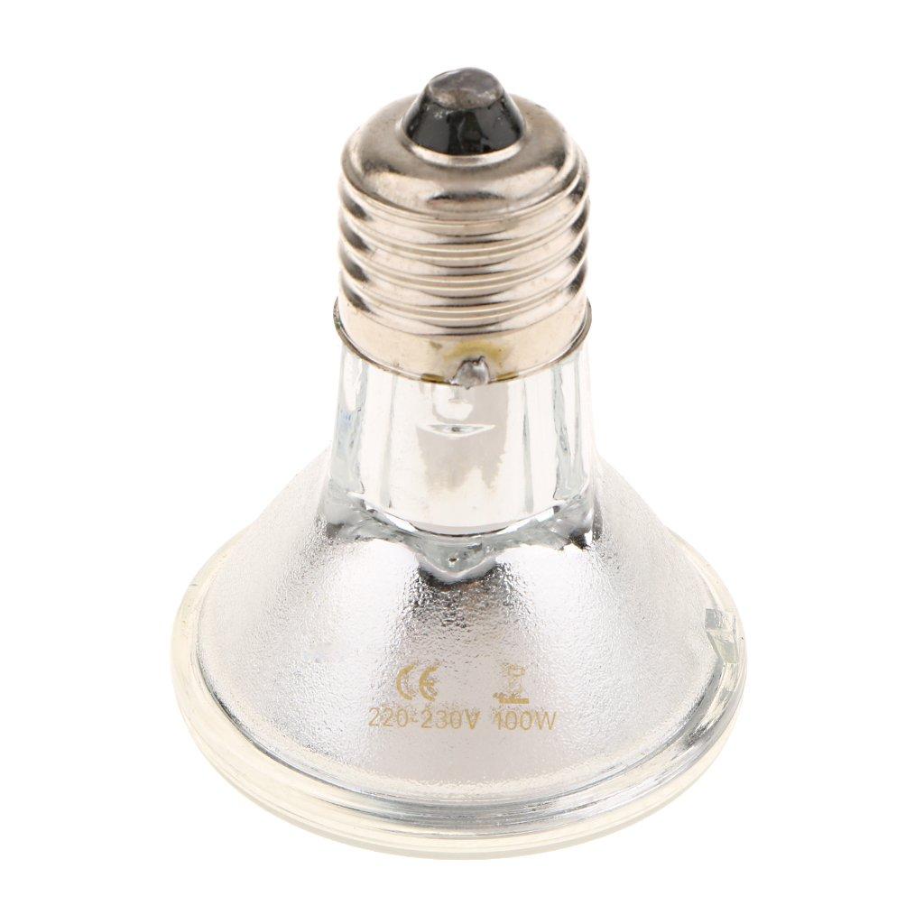 Sharplace Ampoule Terrarium Reptile E27 Halogène Eclairage UVA UVB Chauffage pour Lézard Tortue Animaux de Compagnie 220V - 40W
