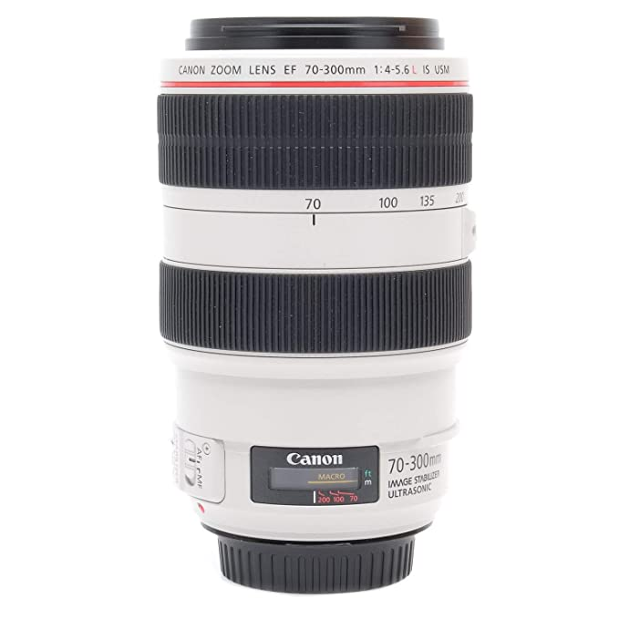 Review Canon EF 70-300mm f4-5.6