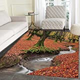 Landscape Rugs for Bedroom Flowing Stream Colorful Autumn Forest Leaves Gorbea Natural Park Spain Circle Rugs for Living Room 4'x5' Paprika and Green