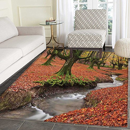Landscape Rugs for Bedroom Flowing Stream Colorful Autumn Forest Leaves Gorbea Natural Park Spain Circle Rugs for Living Room 4'x5' Paprika and Green by Carl Morris
