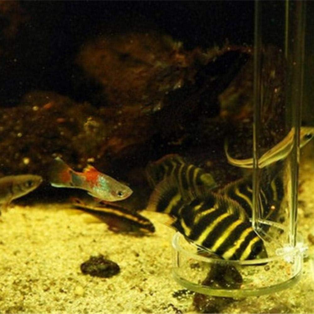 6 Sizes Adjustable Height Clear Acrylic Shrimp Feeding Tube with Glass Dish for Fish Tank//Aquarium 2pcs Suction Cups TEEPAO Fish Feeder Tube