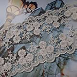 Beige 4 Inches Wide Grace Bilateral Flower Embroidered Mesh Lace Trim Fabric Lace Dress Craft Lace by 3 Yards
