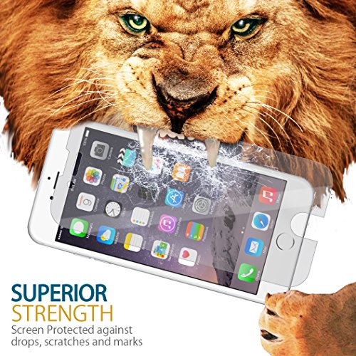 Gadget Smith Screen Protector iPhone