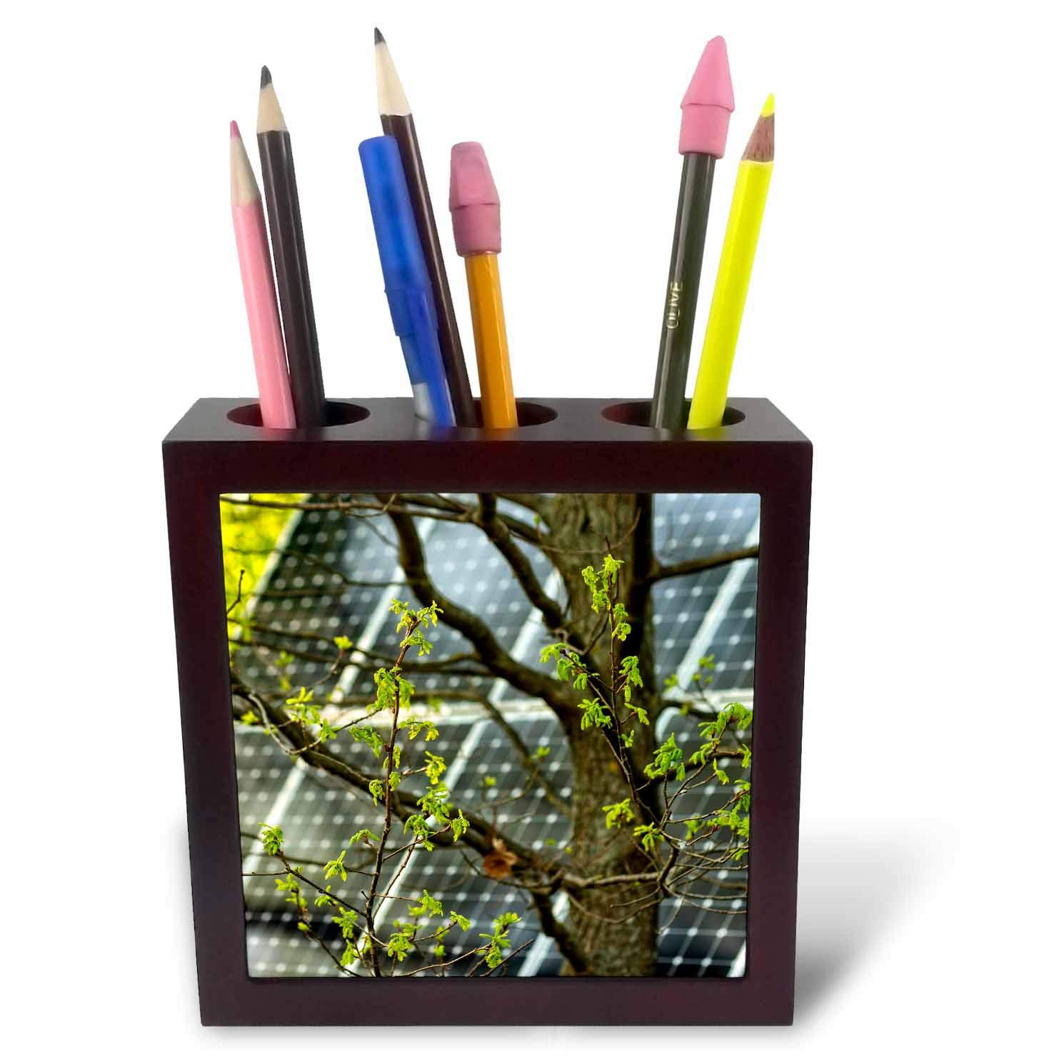 3dRose Alexis Photography - Objects - Oak Tree with Fresh Leaves, Solar Power Panel in The Background - 5 inch Tile Pen Holder (ph_290827_1)
