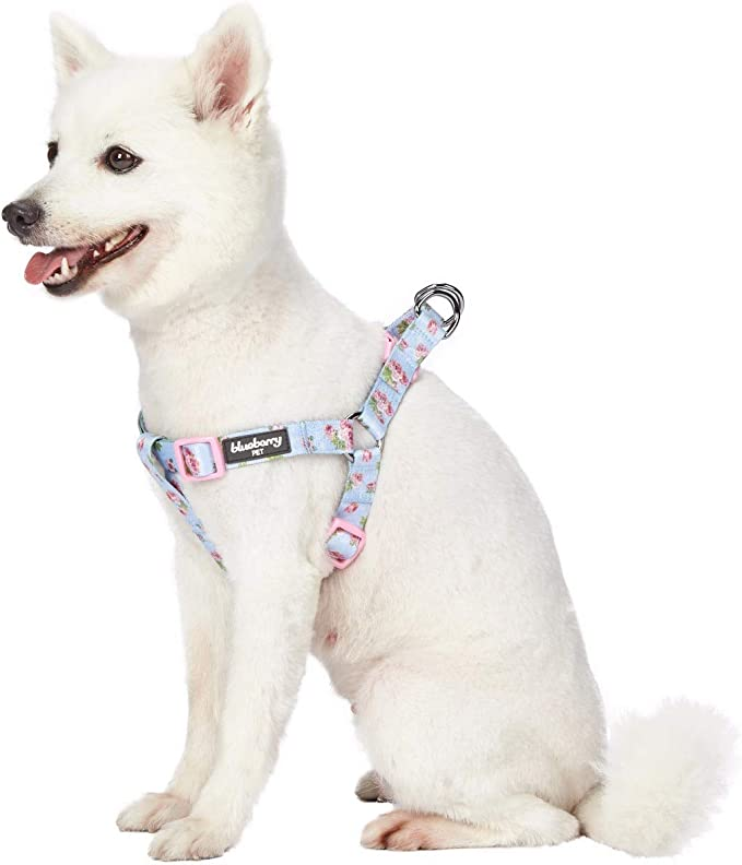Floral Dog  Chest Harness Sunflower