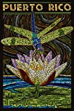 Puerto Rico - Dragonfly Mosaic (24x36 Giclee Gallery Print, Wall Decor Travel Poster)