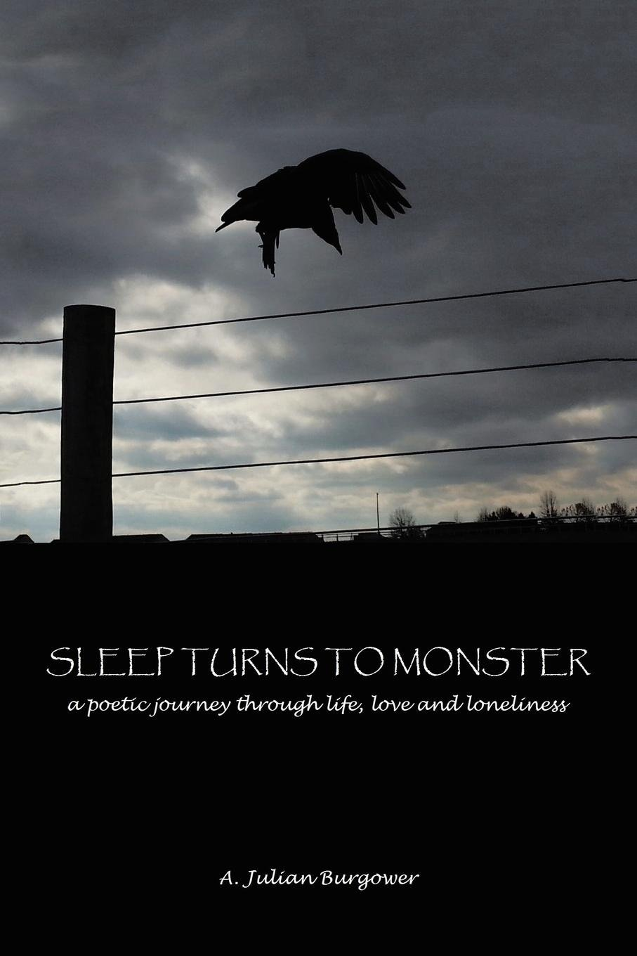 Read Online Sleep Turns to Monster: A Poetic Journey Through Life, Love and Loneliness ebook