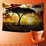 PRUNUS Mandala Tapestry Wall Tapestry Bohemian Wall Hanging Africa Sunset Wall Art Wall Decor Beach Tapestry(36W x 24L INCH)