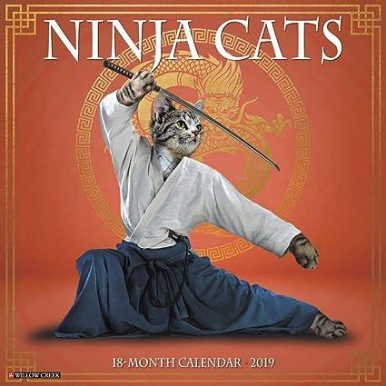 Ninja Cats 2019 - Calendario de pared: Amazon.es: Oficina y ...
