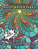 img - for Paisley Adventure 2: A Kaleidoscopia Coloring Book (Volume 2) book / textbook / text book