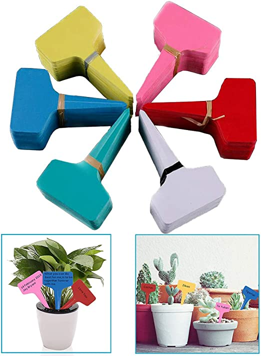 Xinlie Etiquetas y marcadores de plástico en Forma de T para ...