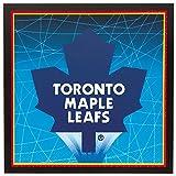 Toronto Maple Leafs Party Napkins, 16ct