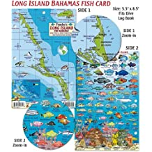 Long Island Bahamas Dive Map & Reef Creatures Guide Franko Maps Laminated Fish Card