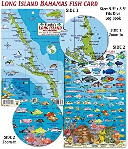 Long Island Bahamas Dive Map & Reef Creatures Guide Franko Maps ...