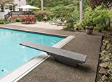 S.R.Smith 68-207-73610T Flyte-Deck II Diving Board