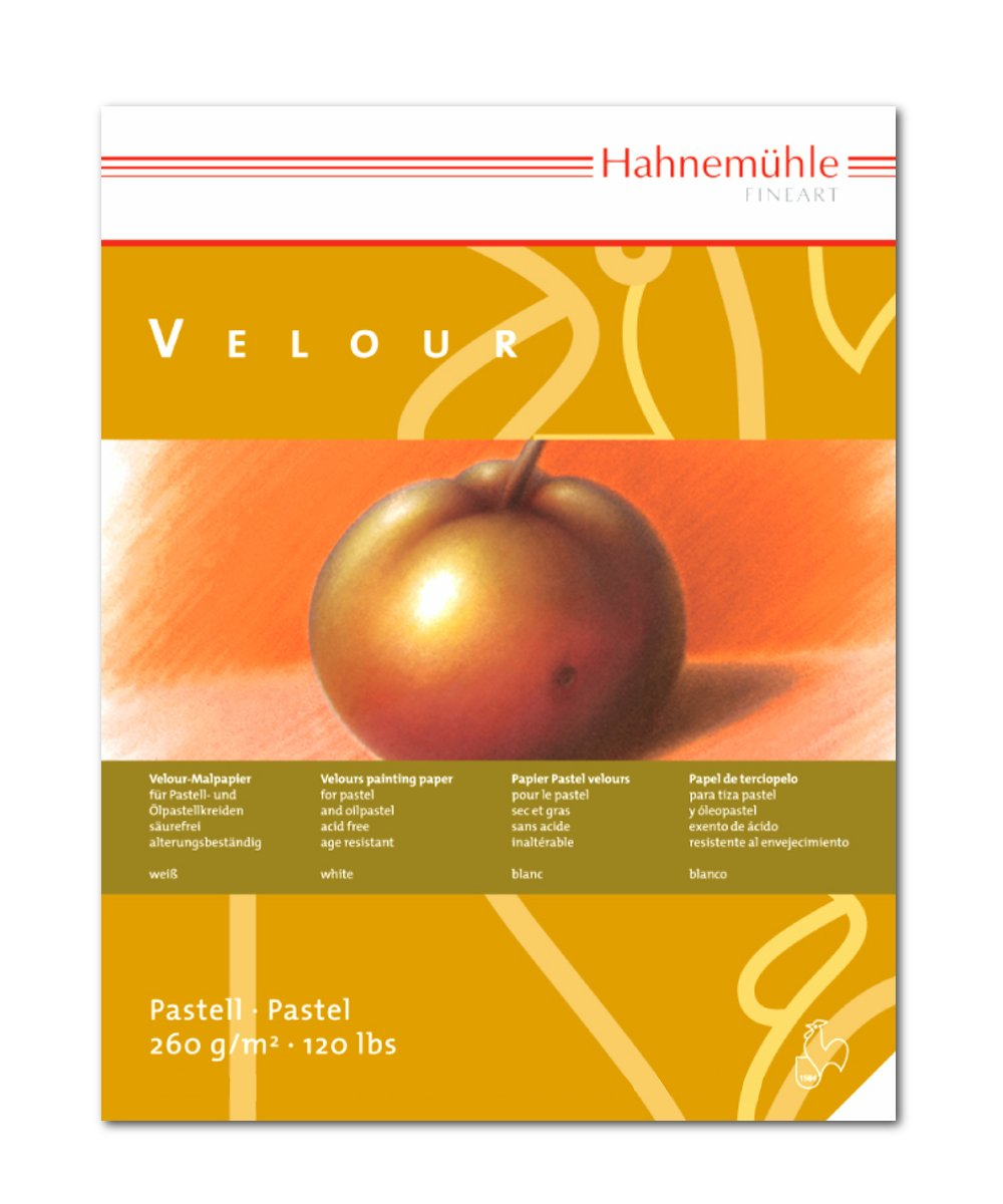 Hahnemuhle Pastel 10 Color Velour Pad 11.7x15.6 Inches 260gsm 10 Sheets by Hahnemuhle
