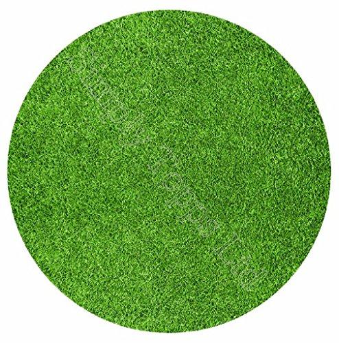Grass Edible (Grass Lawn Themed Printed Sugar Icing Sheet (7.5
