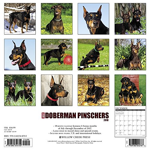 Doberman Pinschers 2018 Wall Calendar Photo #3