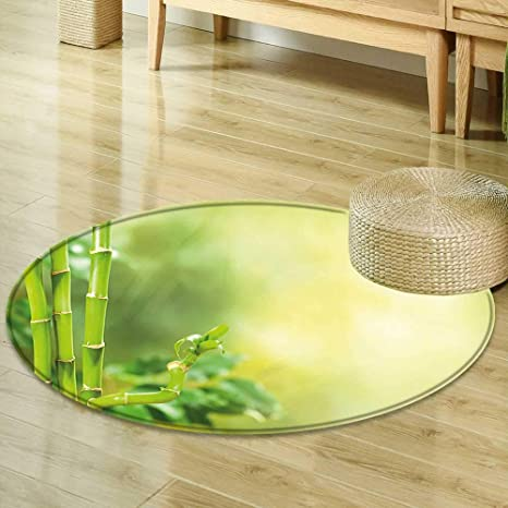 Pleasant Amazon Com Mikihome Round Rugs For Bedroom Spa Decor Green Home Interior And Landscaping Ologienasavecom