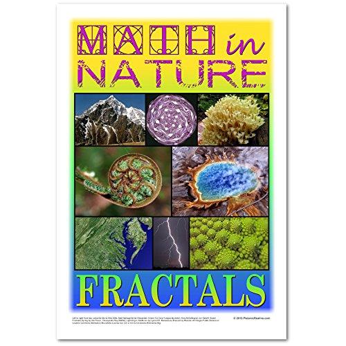 Amazon.com: Matemáticas en la naturaleza Cartel: fractals ...