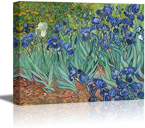 Irises by Vincent Van Gogh Oil Painting Reproduction