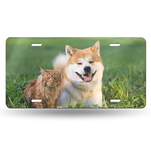 Doinh Lovely Placa de licencia de leña para perros y gatitos que ...