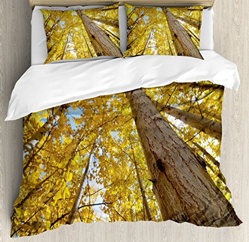 Ambesonne Nature Duvet Cover Set King Size, Image of Up View of Fall Aspen Tree Leaves in Faded Tone Autumn Season Photography, Decorative 3 Piece Bedding Set with 2 Pillow ()