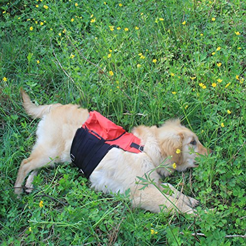 Lifeunion Waterproof Nylon Dog Vest Harness Waistcoat with Pockets Handle for Outdoor Travel Hunting (Red, M)