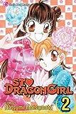St. ♥ Dragon Girl, Vol. 2
