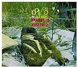 Olo Walicki: Kaszebe II (digipack) [CD]