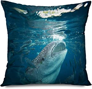 Onete Throw Pillow Cover 18x18 Inches Diving Whale Sharks Cebu Island Philippines Fish Ocean Animals Plankton Snorkeling Wildlife Nature Decorative Cushion Case Home Decor Pilowcase