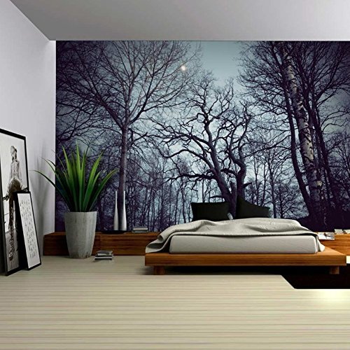 Tapestry Scenery Sunbeams Woodland Landscape product image