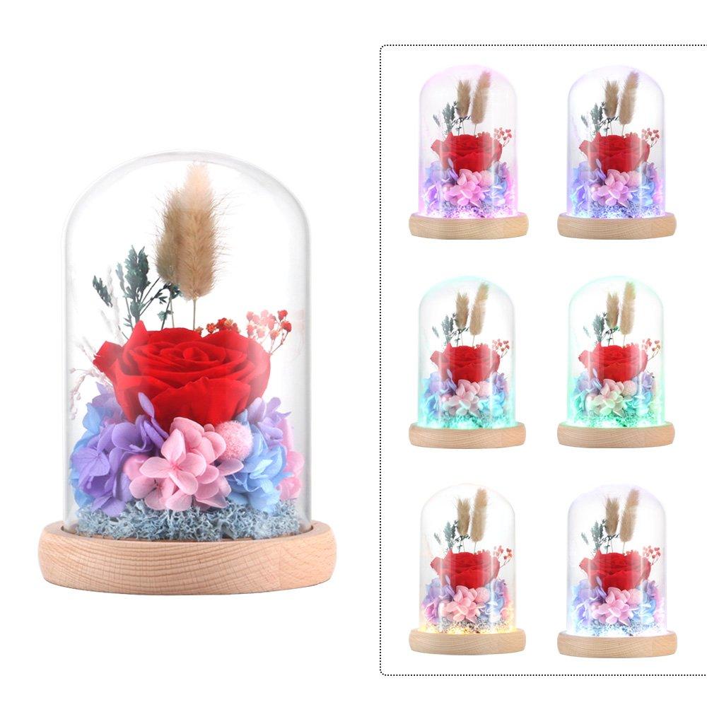Rose artificiali in seta Sparkle rose con paralume in vetro LED luce di striscia grande regalo per San Valentino, festa della mamma Natale compleanno Fresh Rose ALLOMN