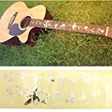 Paleo Guitar Bass Inlay Sticker Fretboard Marker DIY Fret Decal Flowers and Plants