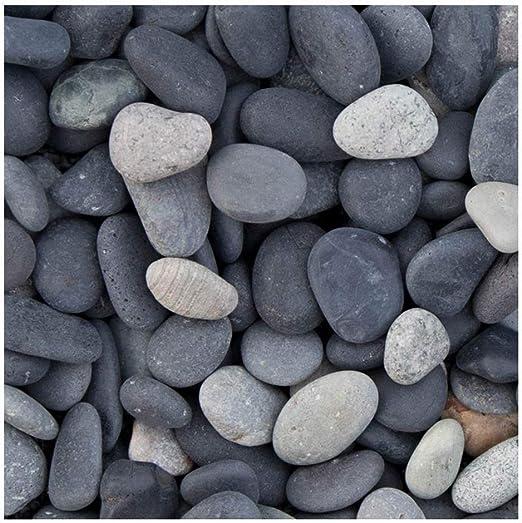 Beach Pebbles Negro con detalles beigen, decorativo Grava para el jardín, 8 – 16 mm, saco de 20 kg, piedras...: Amazon.es: Jardín
