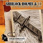 Der Jungbrunnen 2 (Sherlock Holmes & Co 37) | Markus Topf