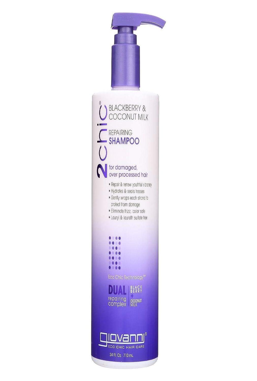 GIOVANNI 2chic BlackBerry & Coconut Ultra Repair Shampoo