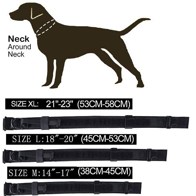Correa para collar de perro con asa táctica K9, tamaño grande ...