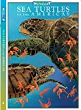 Sea Turtles-WEEKEND NATURALIST, Dawn N. Ericson, 0982835639