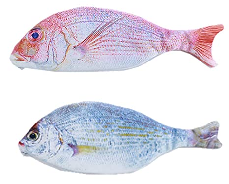 Amazon.com: Hewnda - Estuche con forma de pez para lápices ...